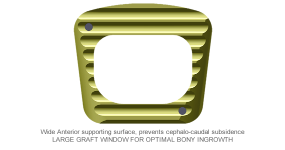 anteriorcervical-interbody-fusion-cage